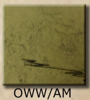 OWW-AMsample.jpg